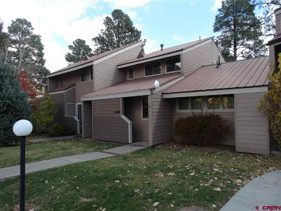 Pagosa Springs Condo/Townhouse For Sale: 33 Davis Cup #4012 Drive