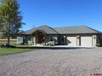 Montrose County Single Family Home NEW: 13127 6080