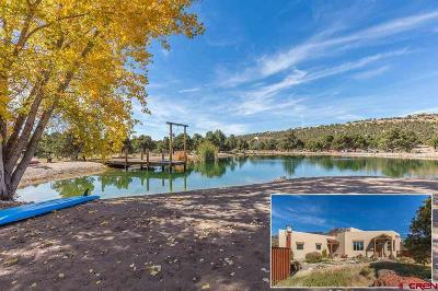 La Plata County Single Family Home For Sale: 347 Jack Rabbit Trail