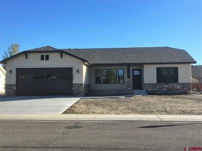 Montrose Single Family Home For Sale: 2628 Peyton Drive