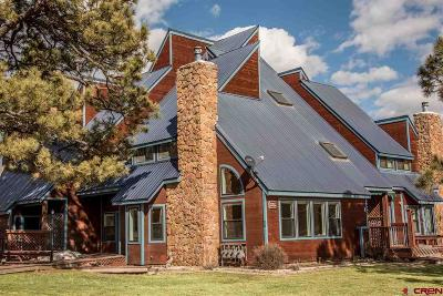 Pagosa Springs Condo/Townhouse For Sale: 147 Wildwood Drive #1