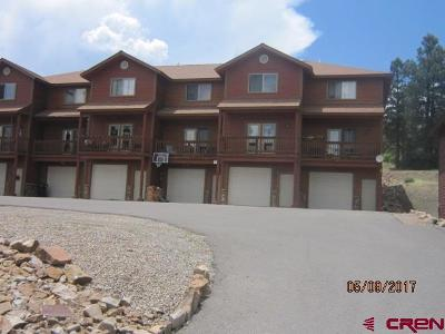 Pagosa Springs Condo/Townhouse For Sale: 176 N 14th Street