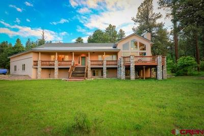 Pagosa Springs Single Family Home For Sale: 80 Fremont Court