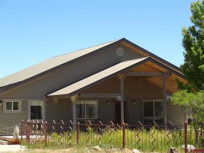 Pagosa Springs Single Family Home For Sale: 3295 County Road 359