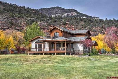 La Plata County Single Family Home For Sale: 96 Twilight Trails Circle