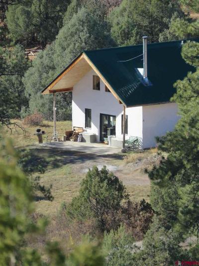 Pagosa Springs Single Family Home For Sale: 344 Alcazar Place