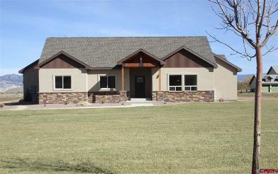 Montrose Single Family Home For Sale: 60145 Kiowa Lane