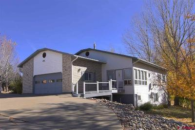 Durango Single Family Home For Sale: 26 Lewis Mountain Lane