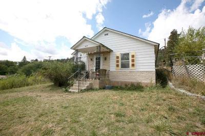 Durango Single Family Home For Sale: 3217 W 2nd Avenue