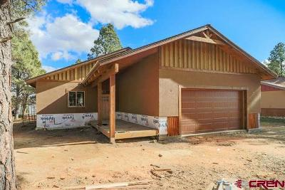 Pagosa Springs Single Family Home For Sale: 203 Inspiration Drive
