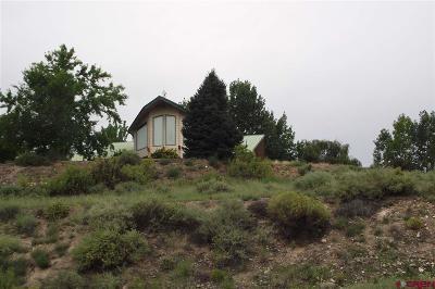Montrose Single Family Home For Sale: 10475 Hillside Road