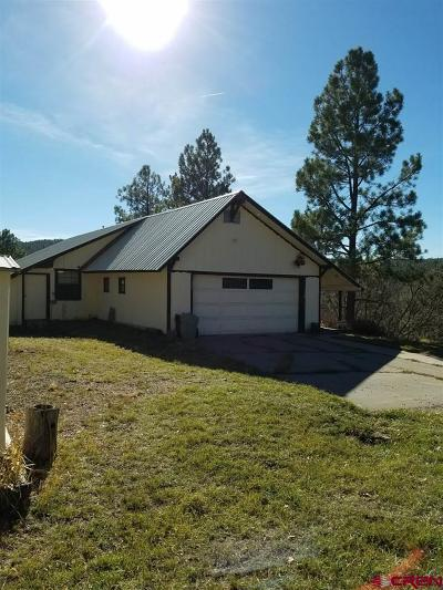 Pagosa Springs Single Family Home For Sale: 392 Harman Avenue