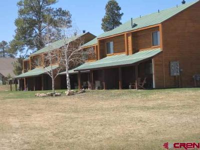 Pagosa Springs Condo/Townhouse For Sale: 302 Talisman Drive #25
