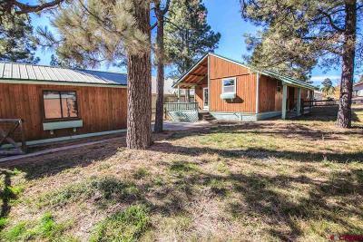 Pagosa Springs Single Family Home For Sale: 359 E Golf