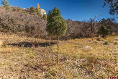 Durango Residential Lots & Land For Sale: 1 Tanque Verde Sd