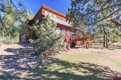 Pagosa Springs Single Family Home For Sale: 250 Buckeye Place