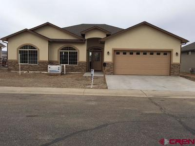 Montrose Single Family Home For Sale: 3824 Lone Tree Lane