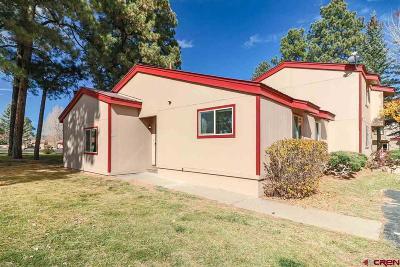Pagosa Springs Condo/Townhouse For Sale: 217 Pinon Causeway #3029