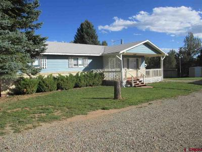 Single Family Home For Sale: 21242 Road W