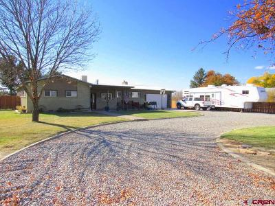 Delta Single Family Home For Sale: 2361 Pioneer Road