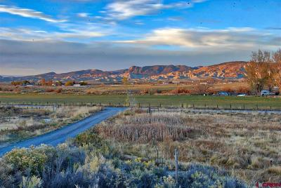 Montrose CO Residential Lots & Land For Sale: $59,900