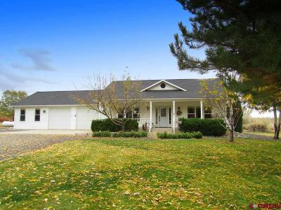 Single Family Home For Sale: 21308 Iris Lane