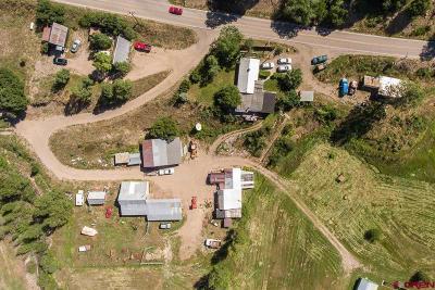 La Plata County Single Family Home For Sale: 617 Cr 207