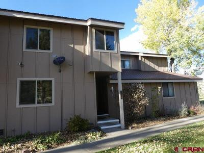 Pagosa Springs Condo/Townhouse For Sale: 145 Davis Cup Drive #4049