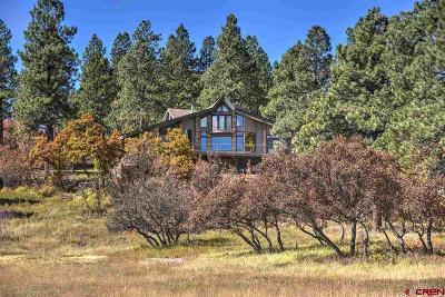 La Plata County Single Family Home For Sale: 2272 Cr 245