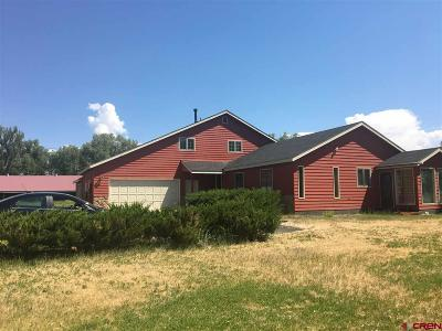 Gunnison Single Family Home For Sale: 250 Ogden Lane