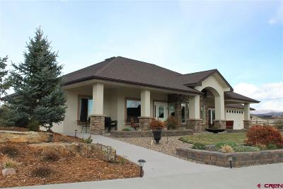 Montrose Single Family Home For Sale: 2265 Majestic Circle