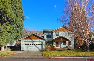 La Plata County Single Family Home For Sale: 34 Animas Place