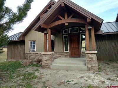 Pagosa Springs Single Family Home For Sale: 910 Wind Walker Place