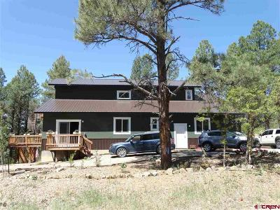 Pagosa Springs Single Family Home For Sale: 384 Monument Avenue