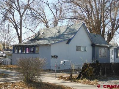 Delta Single Family Home For Sale: 821 Grand Avenue