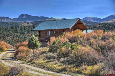 Mancos Single Family Home For Sale: 44501 Hwy 160