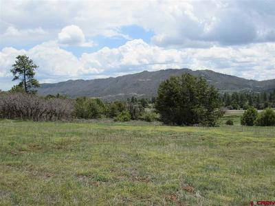 Durango Residential Lots & Land For Sale: D&rg Dr