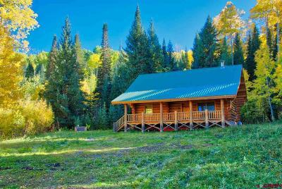 Montrose Single Family Home For Sale: 77500 Buckhorn Rd