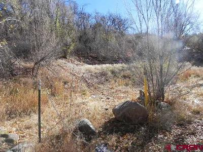 Durango Residential Lots & Land For Sale: 669 E 9th Avenue