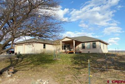 Single Family Home For Sale: 15944 2600 Road