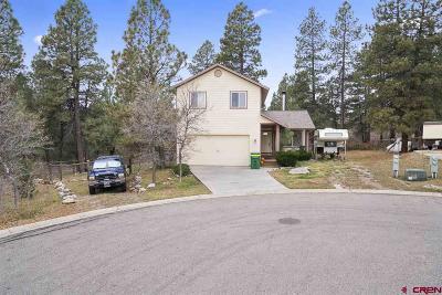 Durango Single Family Home For Sale: 31 Locust Court