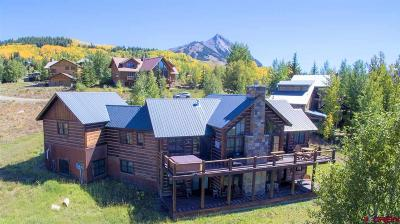 Mt. Crested Butte Single Family Home For Sale: 39 Anthracite Drive