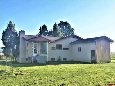 La Plata County Single Family Home For Sale: 1356 County Road 128