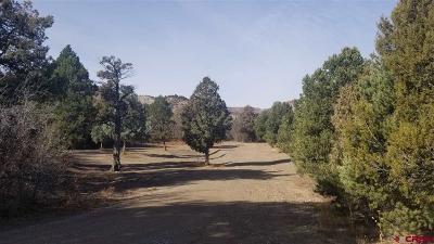 Durango Residential Lots & Land For Sale: 2930 Rancho Durango Road