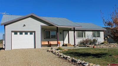 Mancos Single Family Home For Sale: 211 W Menefee