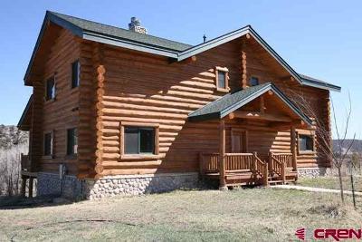 Durango Single Family Home For Sale: 93 River Rim Road