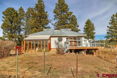 Pagosa Springs Single Family Home For Sale: 7392 Highway 84