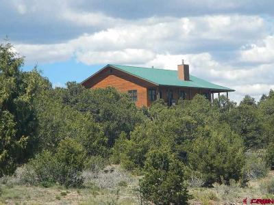 South Fork Single Family Home For Sale: 512 Pinon Hill Road
