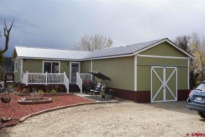 Mancos Single Family Home For Sale: 30300 Road L