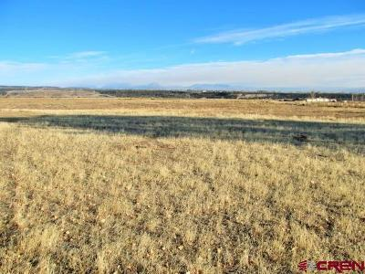 Cedaredge Residential Lots & Land For Sale: 15328 2600 Road